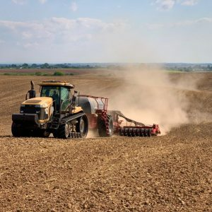 Continental_sowing-2021